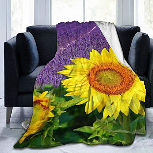 Jreergy Flannel Fleece Blanket - Purple Lavenders Field Sunflowers Throw Blanket for Bedroom Couch Travelling,Comfortable All Season Air Conditioning Blanket for Adult Chidern