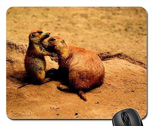 Gaming-Mauspads, Mauspad, Präriehunde Freunde süße Tiere Tierwelt