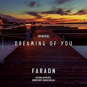 Dreaming of You (Remixes)