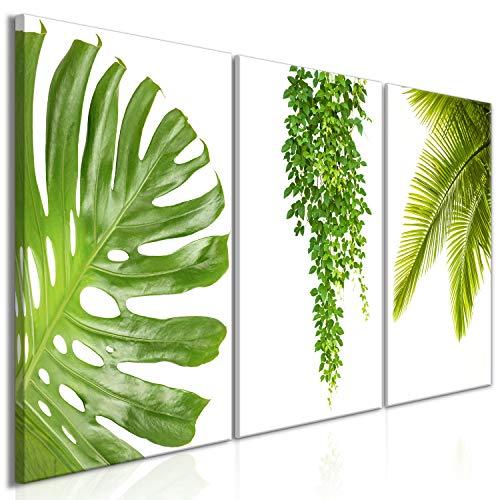 murando - Cuadro en Lienzo Tropical Hojas Monstera 120x60 - Impresión de 3 Piezas Material Tejido no Tejido Impresión Artística Imagen Gráfica Decoracion de Pared - Verde b-B-0309-b-e