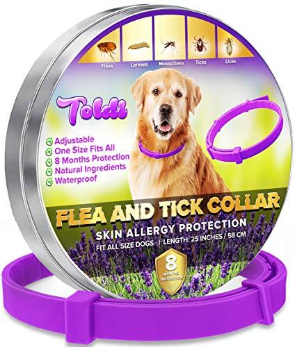 toldi Tratamiento-de-pulgas-para-Perros, Collar-antipulgas-