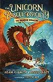 The Basque Dragon (The Unicorn Rescue Society)