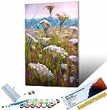 Gato Pintar por Numeros para Pintura de Van Gogh Adultos Niños Pintura por Números con Pinceles y Pinturas Decoraciones DIY Conjunto 40x50cm Sin Marco