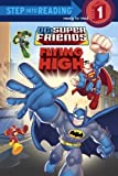 Super Friends: Flying High (DC Super Friends) (Step into Reading) by Random House (2008-05-27)