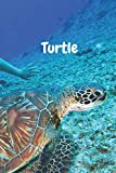Turtle: Amazing Notebook