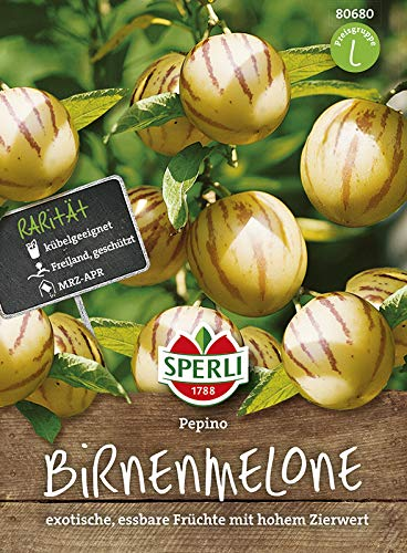 Kürbissamen - Birnenmelonen Pepino von Sperli-Samen