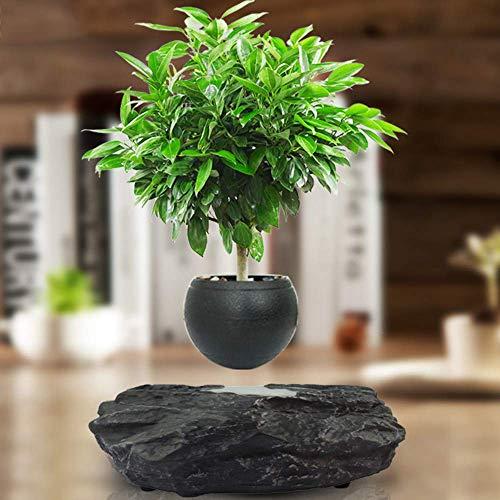 Levitating Air Bonsai Pot - Magnetschwebesuspension Blumentopfpflanze Magnetschwebesuspension Grünpflanze Kreative Blumentopfpflanze Dekoration Lila Sand Schreibtischoberfläche Luftdekoration # 14