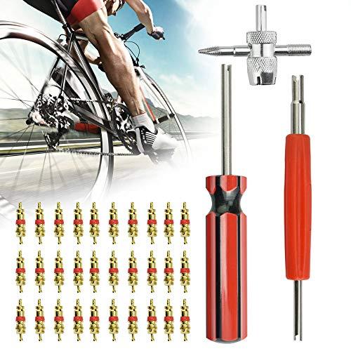 AFASOES 33 Pcs, 30 x Valvulas para Neumaticos +1 x Herramienta de Reparación Acero 4 Llaves + 1x Destornillador+1 x Removedor para Nucleo de Valvula para Bicicleta Coche Moto para Quitar Obus Valvula