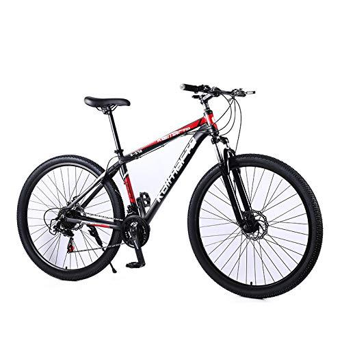 UR MAX BEAUTY 29 Zoll Mountainbike, Erwachsene Mountain Fahrrad, Mechanische Scheibenbremsen, Federung Vorne Männer Frauen Bikes,b,29 inch 21 Speed