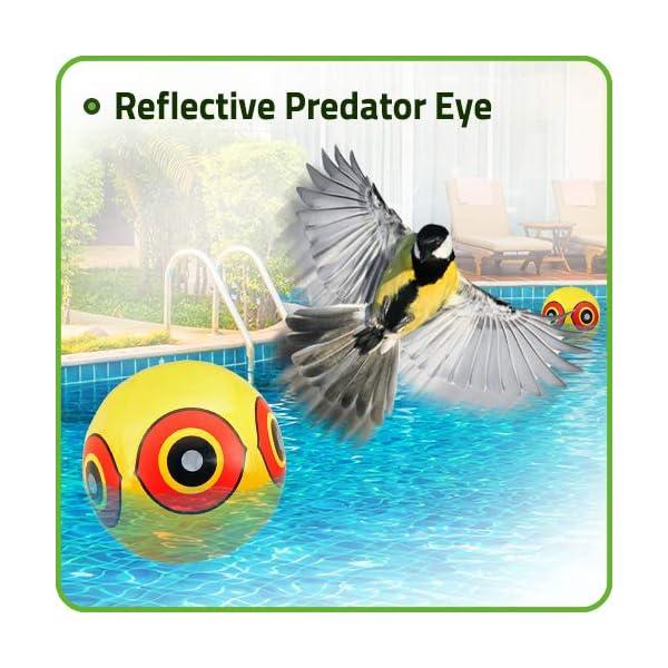 De-Bird Globos / Bolas repelentes de aves – Disuasorio visual contra pájaros carpinteros, pichones, gorriones – Fiable