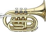Levante LV-TR4415 bb de dibujo de instrumentos de bolsillo - lacado