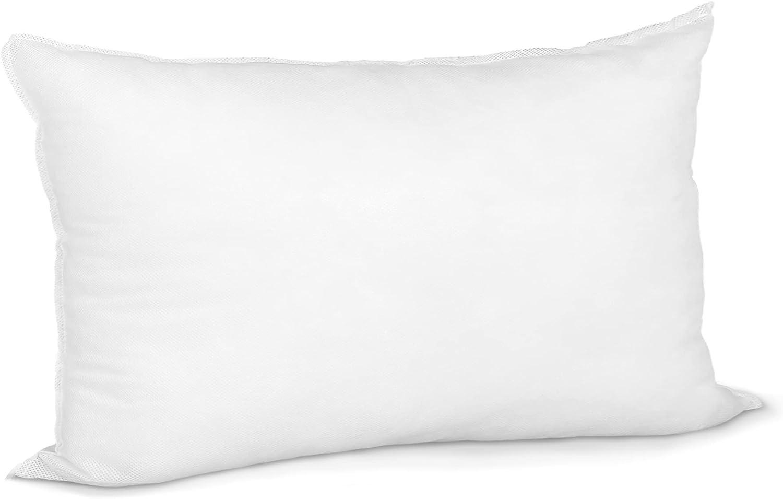 Pillow Insert 20