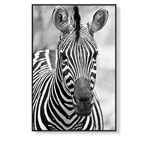 Láminas Decorativas Nórdicas de Pared para Enmarcar, Posters y Cuadros de Estilo Nórdico en Blanco y Negro sin Marco | Cebra, LD-BN-02