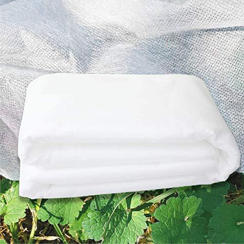 Abimars Frostschutztuch, Gartenvlies für Pflanzen, Frostschutz, Winterpflanzenschutz, Vliesstoff, Abdeckplane für Gartenbaupflanzen, 2,5 m x 10 m, 30 g