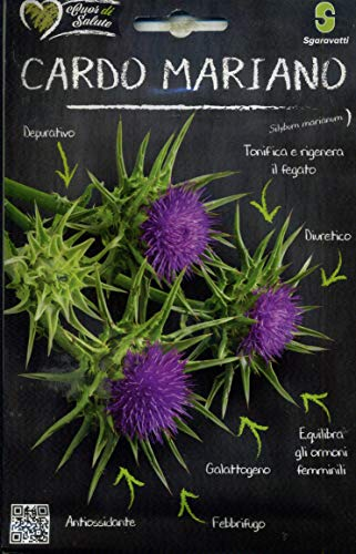 Sgaravatti Cuor di salute sementi da orto in bustina termosaldata (CARDO MARIANO - Silybum marianum)