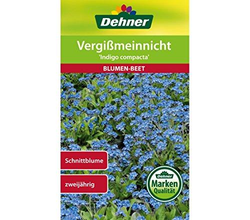Dehner Blumen-Saatgut, Vergißmeinnicht