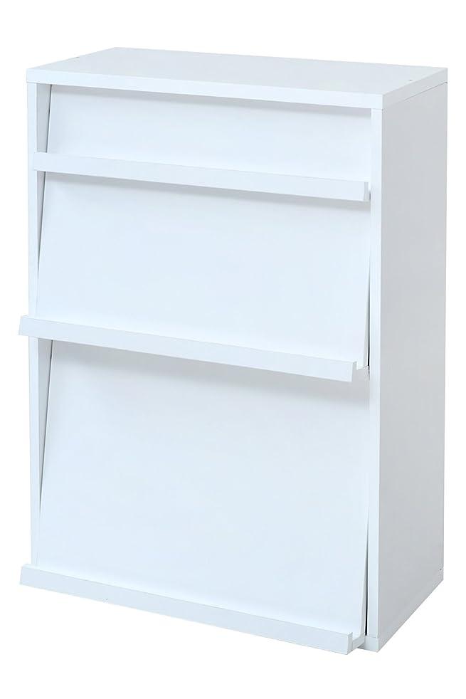 不実盲目シンカンJKプラン 6BOXシリーズ ディスプレイラック cv dvd や 雑誌 が ディスプレイ 可能な ラック 幅 60 cm ホワイト fr-045-wh