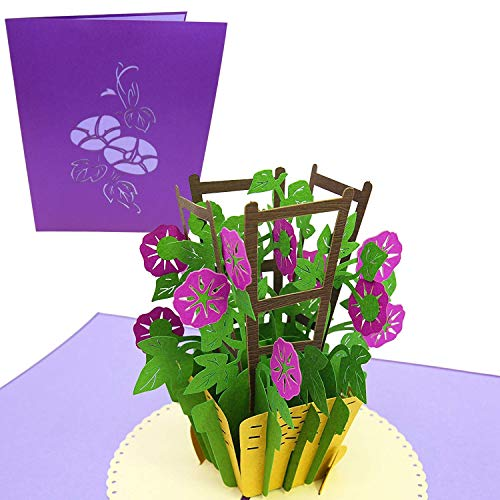 PopLife Purple Morning Glory 3D Pop Up Mothers Day Card - Flower Anniversary Gift, Happy Birthday, Thank You, Valentines Day - for Mom, Daughter, Sister, Wife, Grandma, Step-mom
