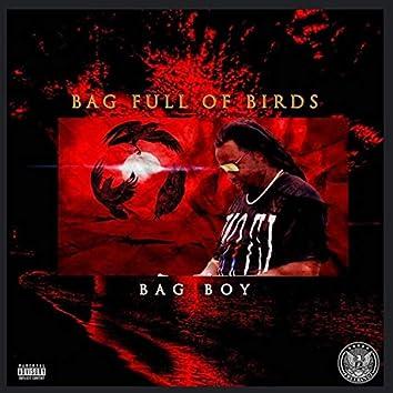 Bag Full Of Birds