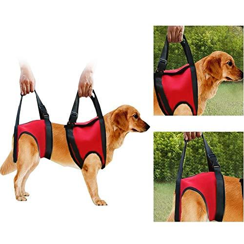 Hund Hebegeschirr, Hilfe Hund Schlinge Unterstützung Walking für Senioren Behinderte Walking Hunde Gelenkverletzungen,Rear Leg,L