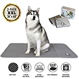 Trendy Den Creations - Washable Pee Pads for Dogs - Reusable Puppy Training