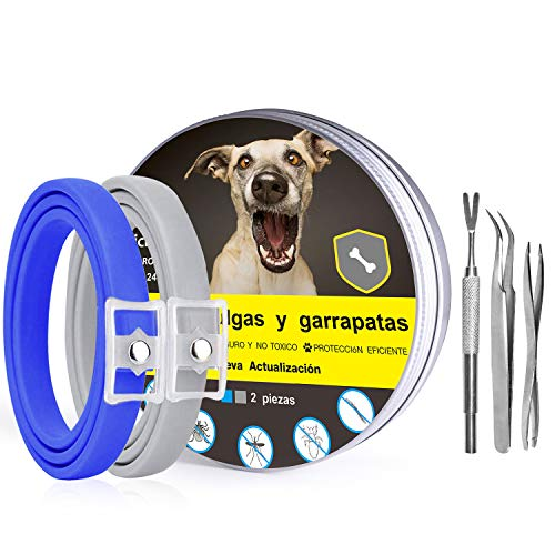 Magichome Collar Antiparasitario para Perros y Gatos contra Pulgas, Garrapatas y Mosquitos, 63cm Collares Antipulgas y Garrapatas, Dos Piezas