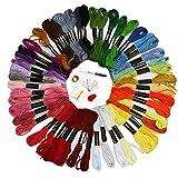Jmitha Hilo Punto de Cruz, Hilos de Bordado, 50 Tipos de Colores Bordados Hilo de Bordar, Punto de cruz, perfecto para pulseras de la amistad, bordado, punto de cruz manualidades (50 Colors y)