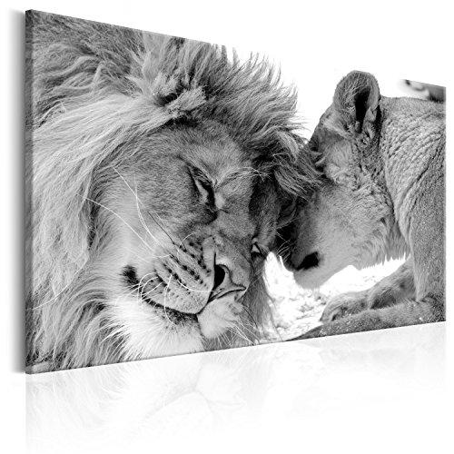 murando Cuadro en Lienzo Leon 120x80 cm 1 Parte Impresión en Material Tejido no Tejido Impresión Artística Imagen Gráfica Decoracion de Pared Leon Animales Africa g-B-0034-b-b