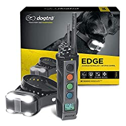 dogtra edge rt review