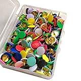 Healifty 300Pcs Alfileres de Empuje Alfileres de Empuje Plano de Plástico Colorido Suministros de Papelería de Oficina en El Hogar Multifuncionales