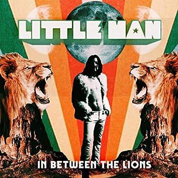 In Between the Lions