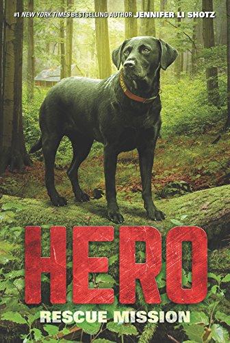 Hero: Rescue Mission