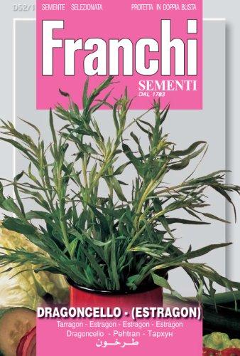Franchi Pissenlit
