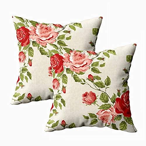 ZQLXD Fundas de almohada suaves para sofá, fundas de almohada de fondo, rosas al aire libre, fundas de almohada de 45 x 45 cm, juego de 2