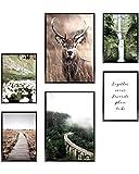 Heimlich® Premium Poster Set OHNE Bilderrahmen  