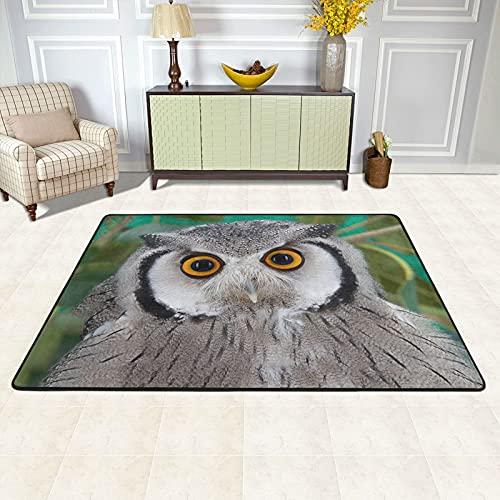 Alfombra de área para sala de estar, búho, zoológico, animales, alfombra antideslizante, decoración del hogar, dormitorio