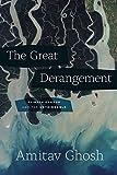 The Great Derangement:...image