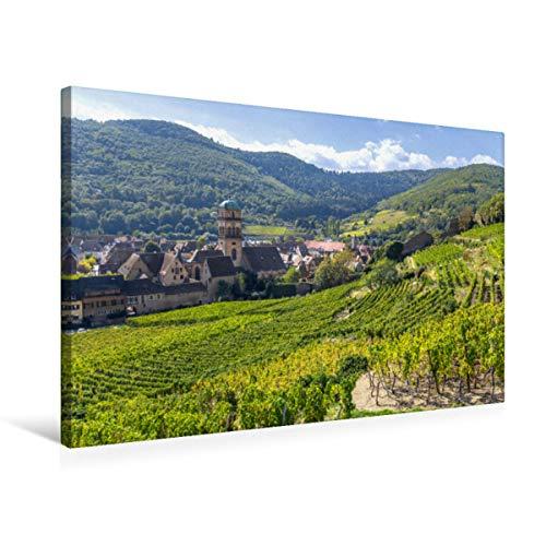 Paroi textile de qualité supérieure 75 cm x 50 cm - Un motif issu du calendrier de l'Acide à vin, de l'acidyle, de l'acarien, de la vin, de la vin, de l'épicéa
