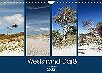 Weststrand Darss (Wandkalender 2022 DIN A4 quer): Darss, Nationalpark Vorpommersche Boddenlandschaft (Monatskalender, 14 Seiten )