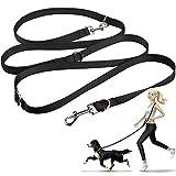 oneisall Hundeleine Nylon, 2.5m für kleine & große Hunde, 3fach verstellbar, Robuste Doppel-Leine Schlepp-Leine Führ-Leine Trainingsleine Handschlaufe und D-Karabiner (Schwarz)