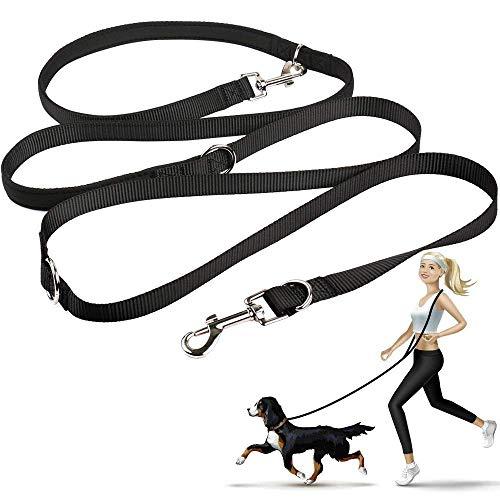 oneisall Hundeleine Nylon, 2.5m für kleine & große Hunde, 3fach verstellbar, Robuste Doppel-Leine Schlepp-Leine Führ-Leine Trainingsleine Handschlaufe und D-Karabiner