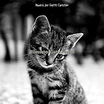 Rilassato (Gatti Carini)