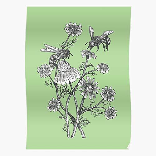 Floral Honeybee Chamomile Herbs Tea Herbal Flower Bees Regalo para la decoración del hogar Wall Art Print Poster