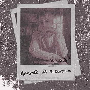 Amor In Bando