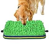 Jior Schnüffelteppich Hunde, Hunde Intelligenzspielzeug für Futtersuchfähigkeiten, Waschbar...