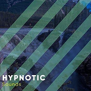 # 1 Album: Hypnotic Sounds