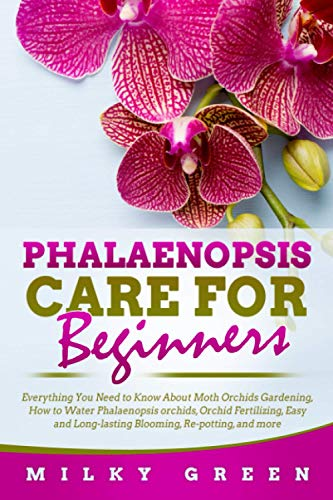 Phalaenopsis Care for Beginners: Everything You Need to Know About Moth Orchids Gardening, How to Water Phalaenopsis orchids, Orchid Fertilizing, Easy and Long-lasting Blooming, Re-potting, and more