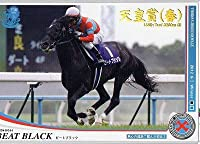 オーナーズホース04/第4弾/NW/☆/ビートブラック(天皇賞 春)