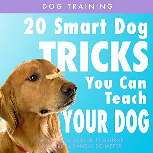 Dog Training: 20 Smart Dog Tricks You Can Teach Your Dog Titelbild