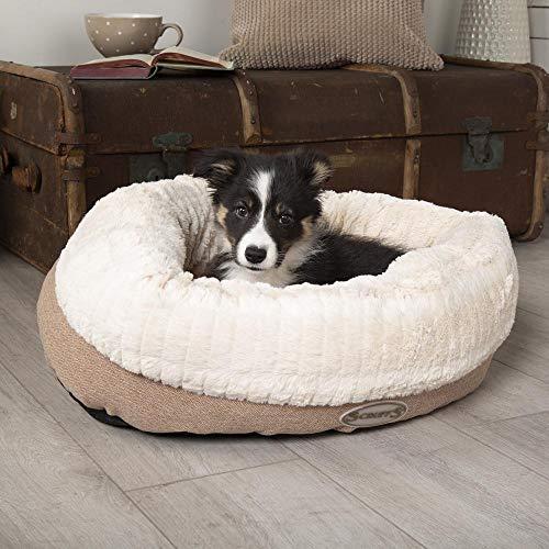 Scruffs Ellen Donut Braun Hundebett sind eine stilvolle Ergänzung für jedes Interieur